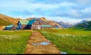 Islandia-wies